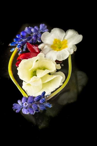 Flower Ring by Johnpics