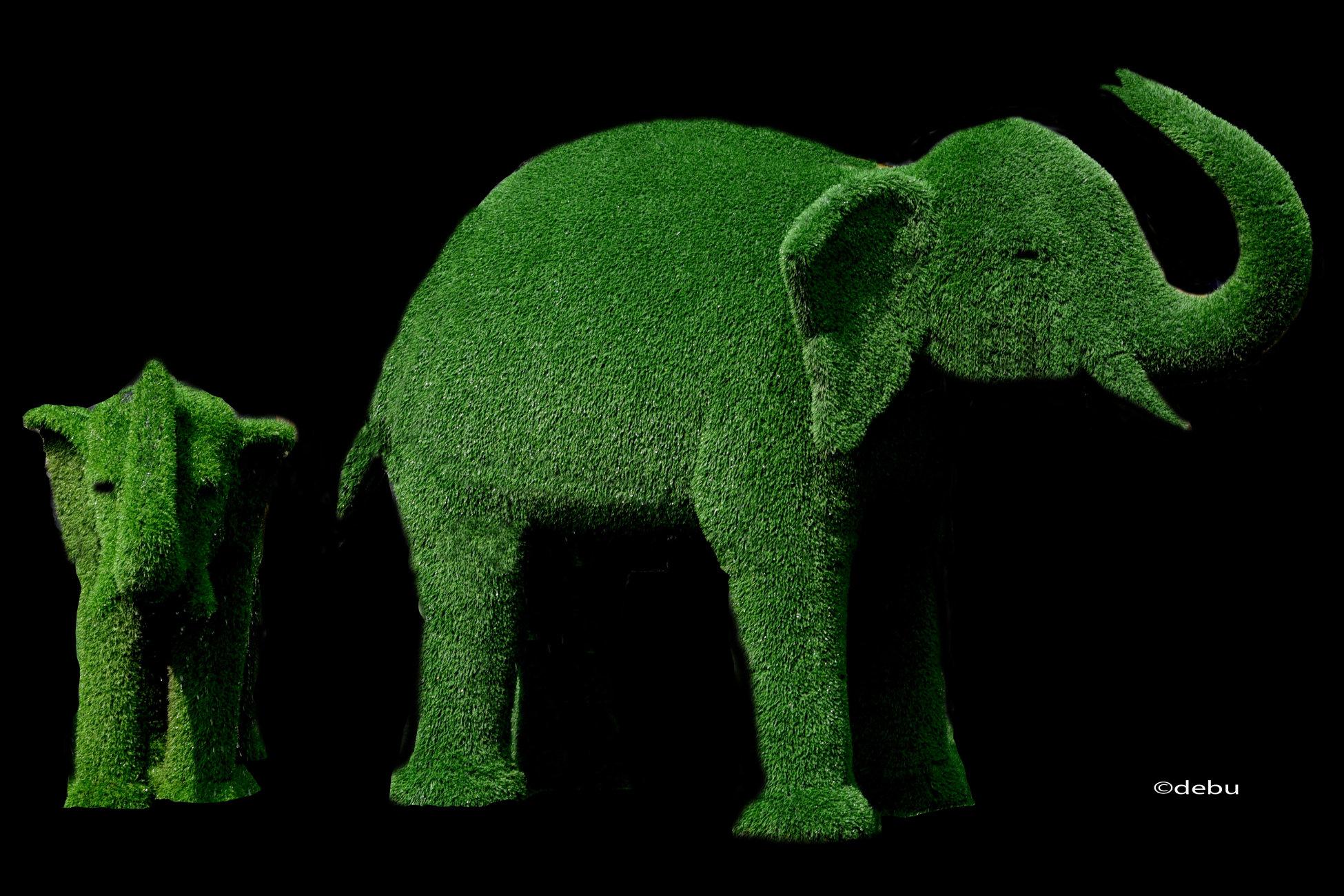 Elephants symbolise wisdom and royal power.
