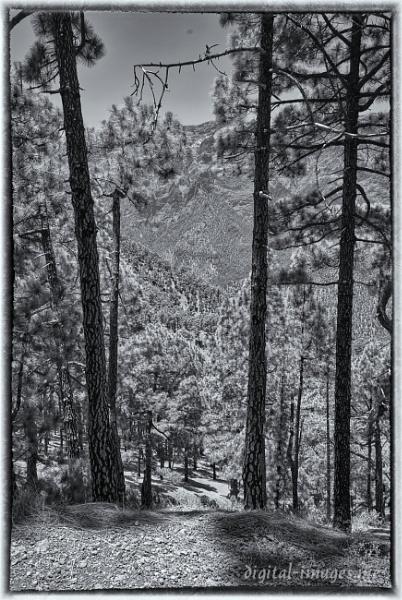 Caldera de Taburiente, La Palma by Alan_Baseley