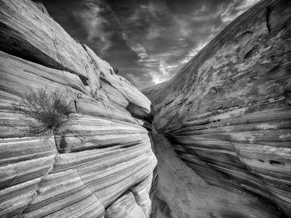 Desert Walls by mlseawell