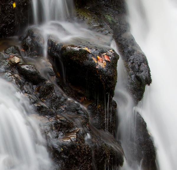 Flow by Arvorphoto