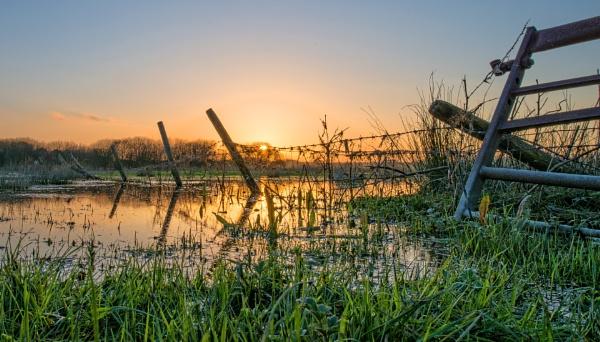 Hacklinge Marshes by carper123