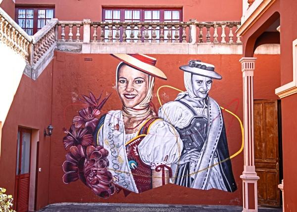 Wall Art, Jardins Victoria, La Oratava, Tenerife by brian17302