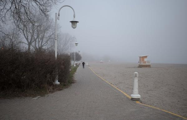 Along the misty boardwalk by banehawi