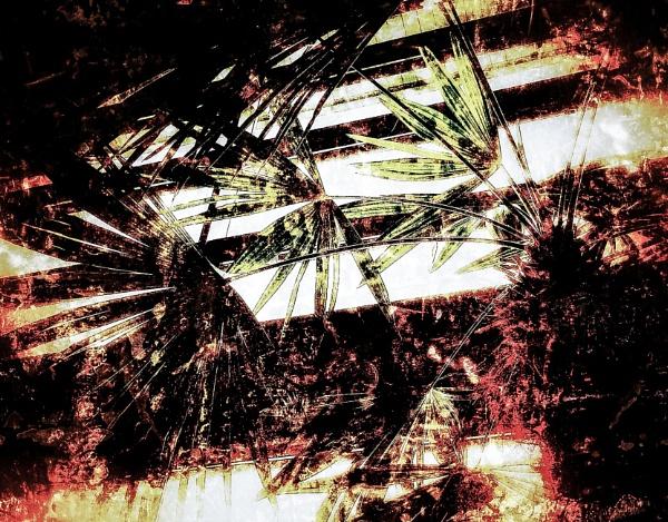 Tree Palm by Monochrome2004