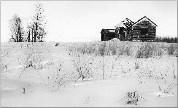 Winter in Alberta by MalcolmM
