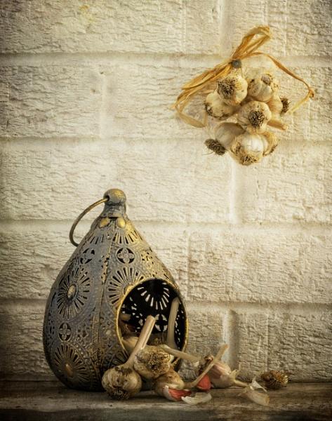 Garlic by chase