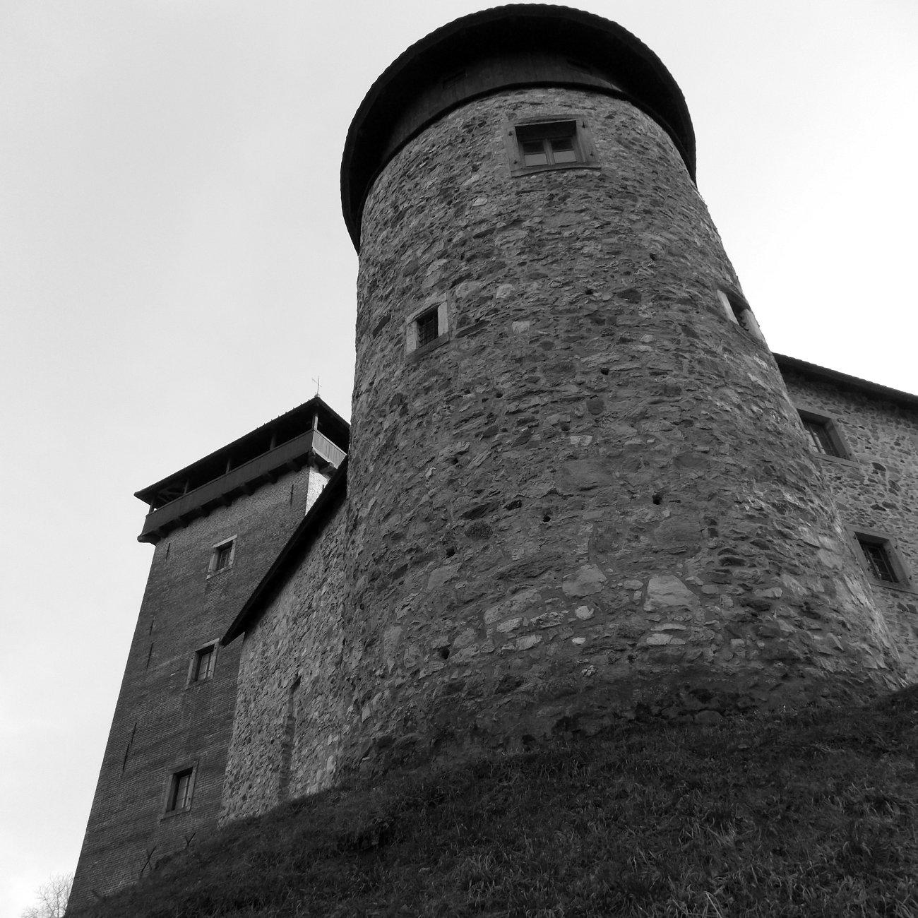 Stari Grad Dubovac II