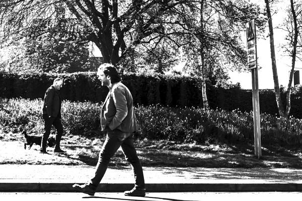 man walking dog by angryrebel