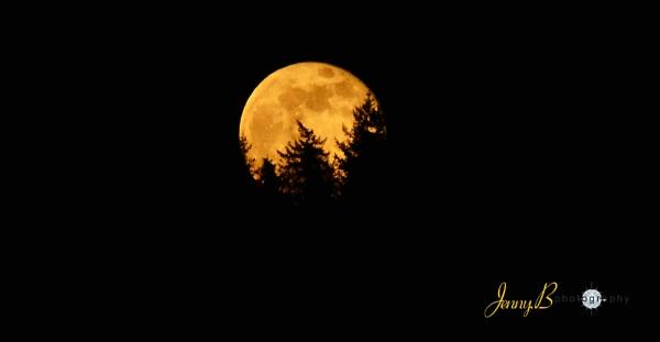 Moon by jb_127