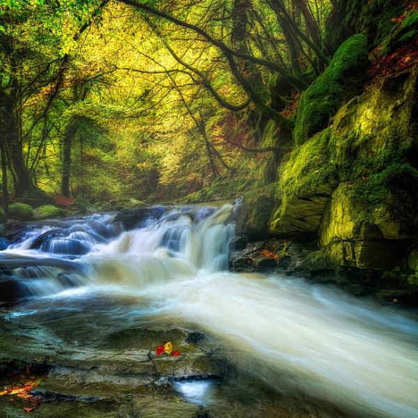 The wonder of Autumn by douglasR