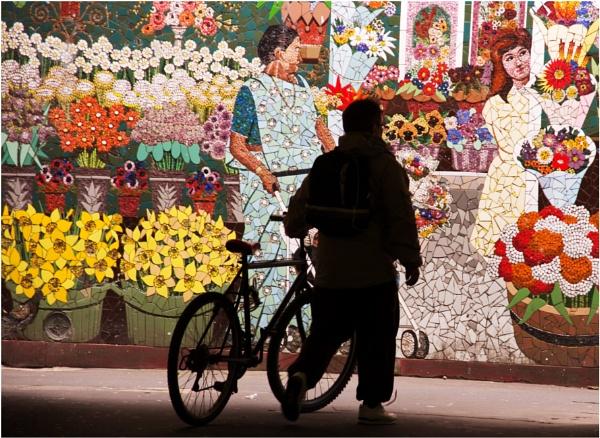 A flower show. by franken