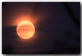 Pink? Moon