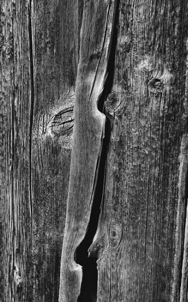 Barn study #Series 1 by mlseawell