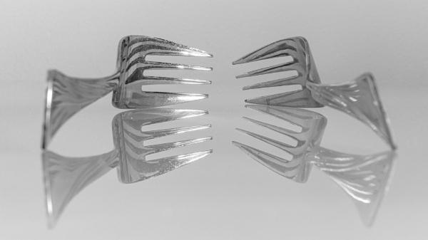 Forks by Stevetheroofer