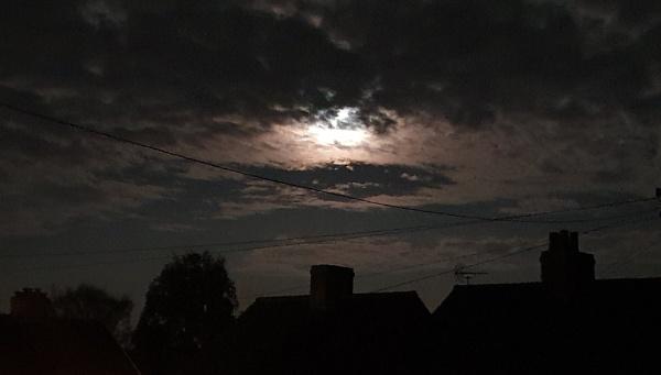 Nightlight by Pretium