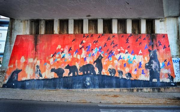 Bear graffito by jacomes