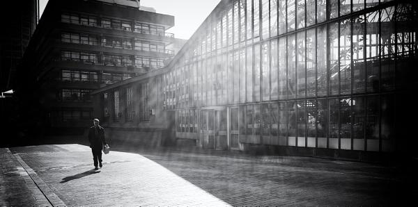 Glasshouse by PavanChavda