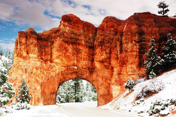 Red Canyon UT. by jrsundown