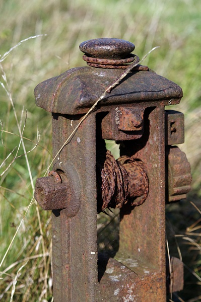 Cast Iron Fence Post by pledwith