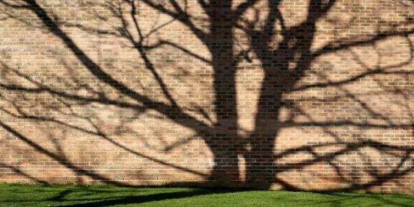 Saturday Shadows by RysiekJan