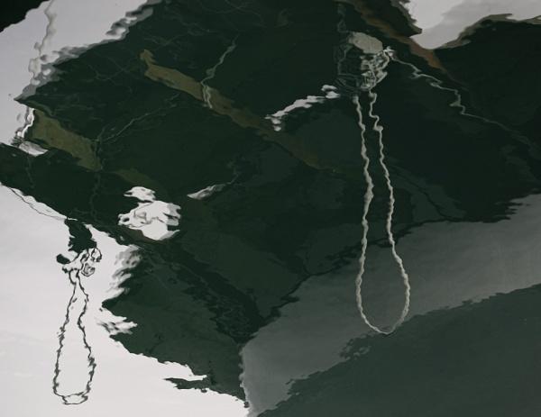 Loose Noose by Daisymaye