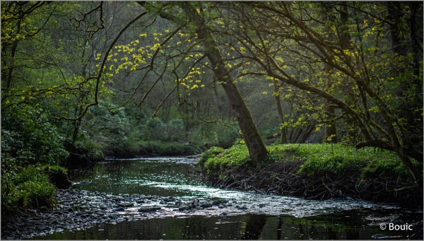 Evening light River Yarrow by bouic