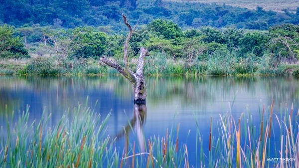 Lake not so Placid. by paskinmj