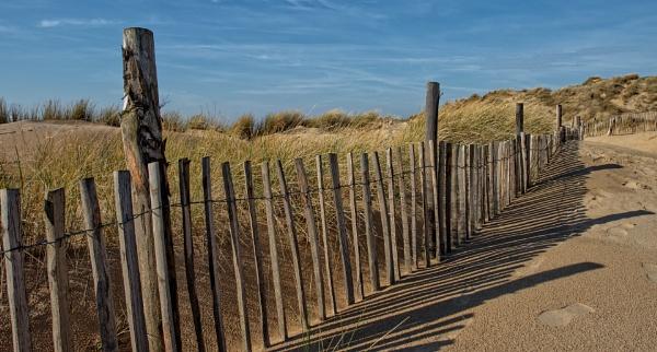Sand Dunes by carper123