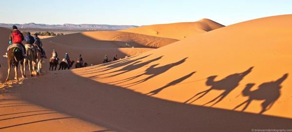 Desert Shadows, Erg Chebbi, Western Sahara, Morocco by brian17302