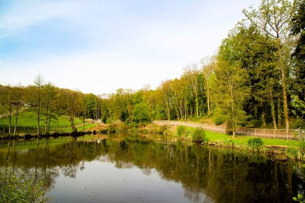 Fishing lake at Guilsfield by cegidfa