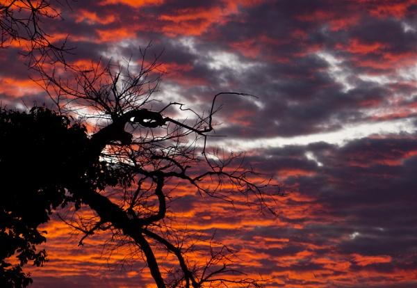 Berlin Sunset by FotoDen