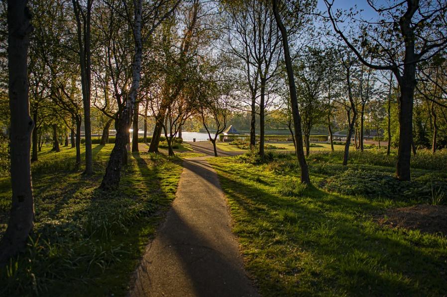 Dawn Path