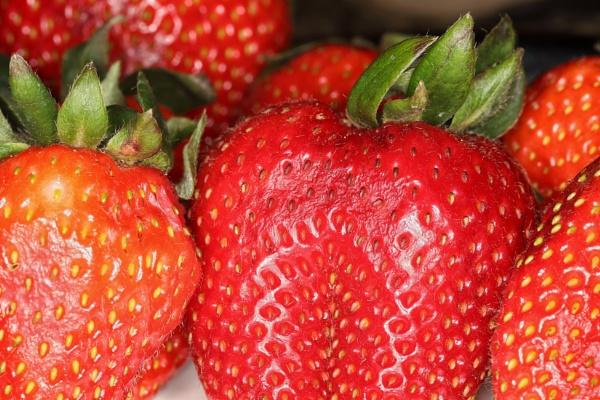 Strawberry by Merlin_k