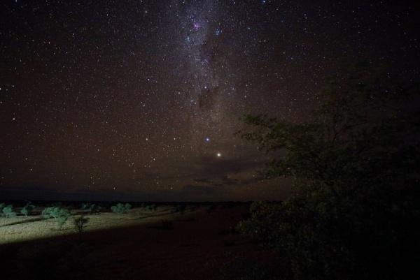 stary stary night by joeblade