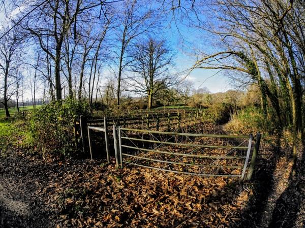 A footpath along the Taff Trail, Cardiff by Richardjwills