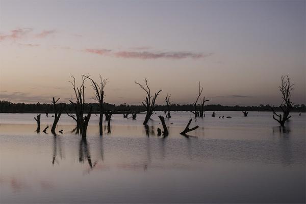 Sunset over Cobdogla Swamp by jennialexander