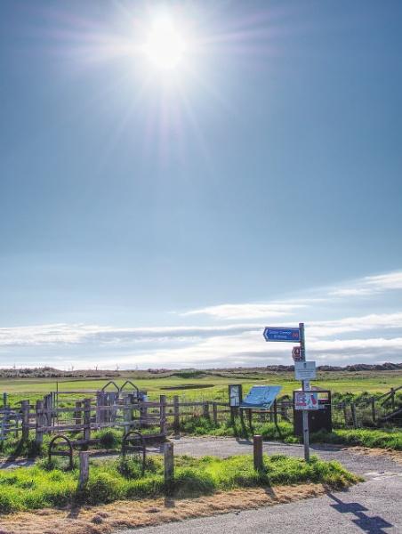 Sunny Morning Walk by DaveRyder