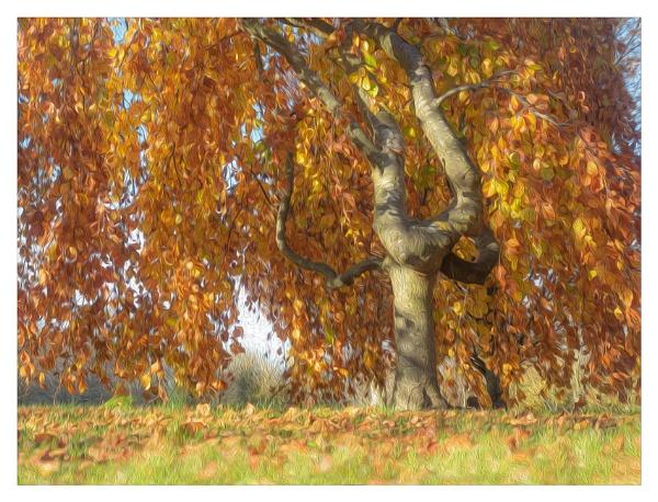Golden leaves by suemart
