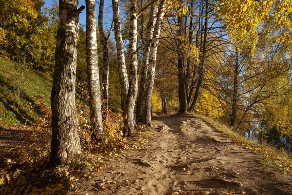 The autumn evening by AVoizechovsky