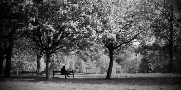 Park Isolation by RysiekJan