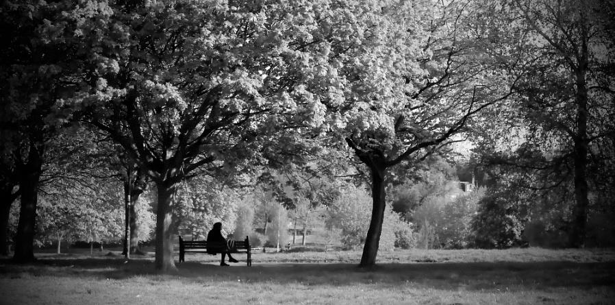 Park Isolation