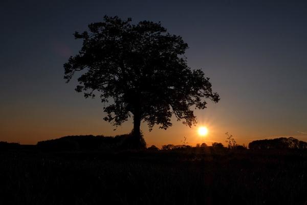 Sunset. by bluetitblue