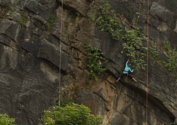 Hang On!! by tralfamadorean