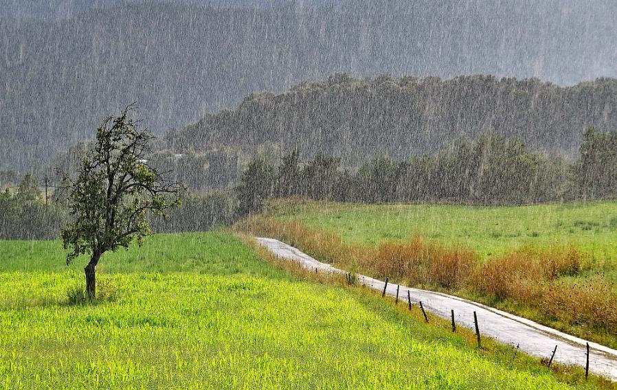 Landscape in the rain