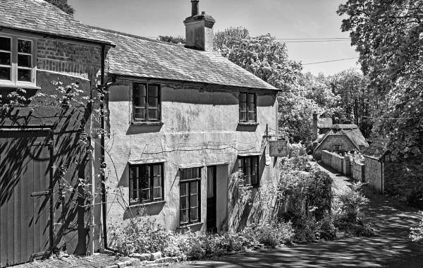 Cottage Scene, Near Uplyme, Devon by starckimages