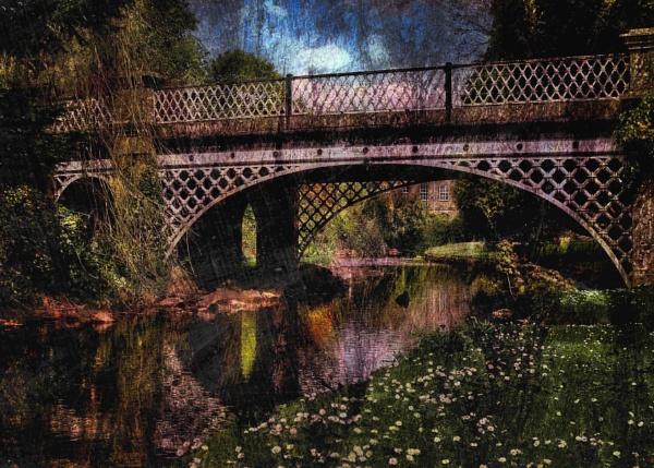 Bridge & Daisies by adagio