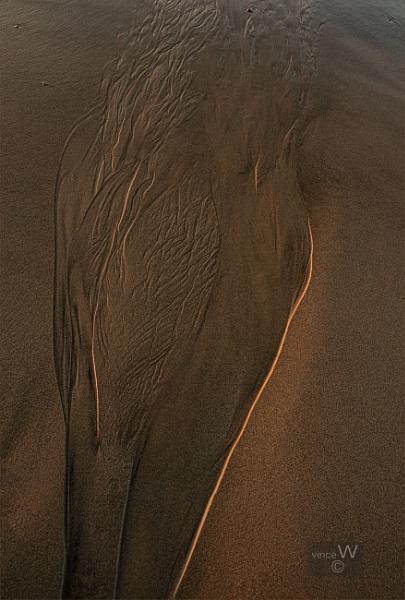 Sunrise tones. by ziggystardust111