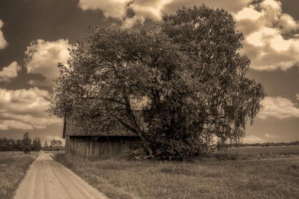 Old Barn by Leikon