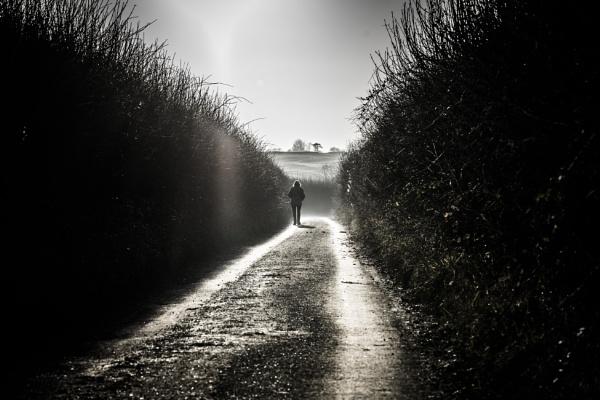 Long Way Home by Silverlake